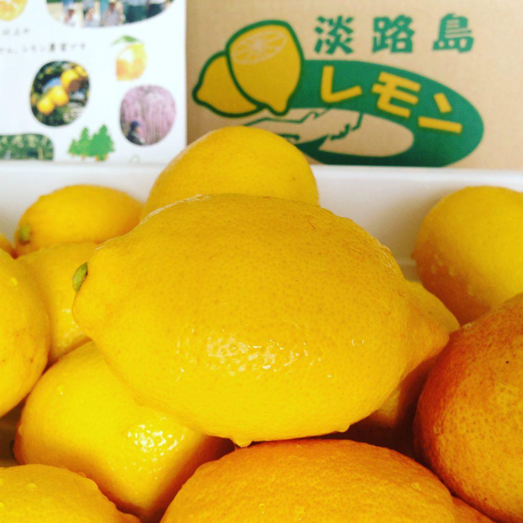 Japon citron