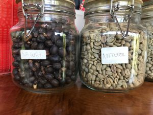 coffee beans natural