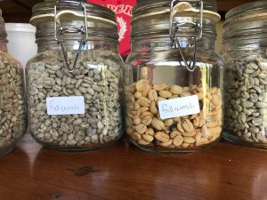 coffee beans washed
